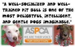 pit bull lies truth facts