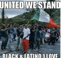black community and the latino community unite